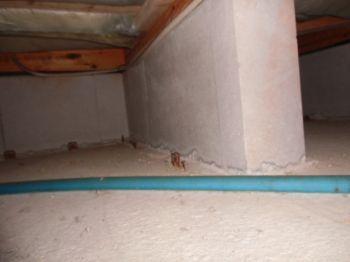 床下の住宅診断